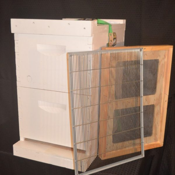 First Year Beekeeping Kit