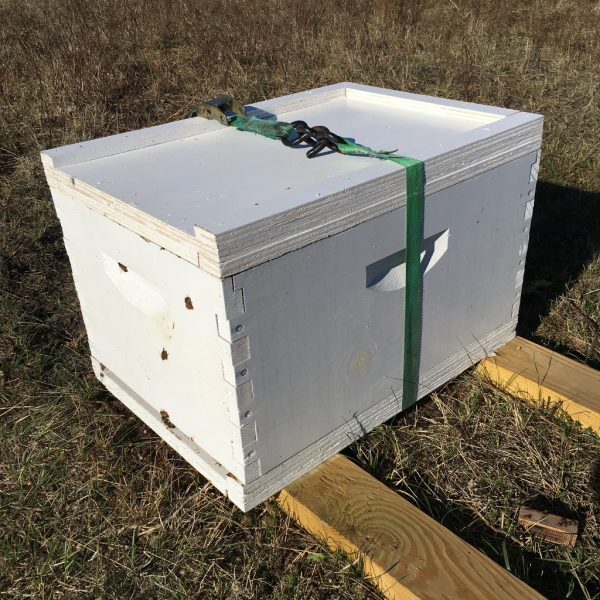 Russian nucleus beehive in 8-frame deep box