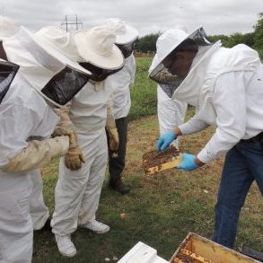 Beekeeping Class Looking at a Frame from a Langstroth Hive